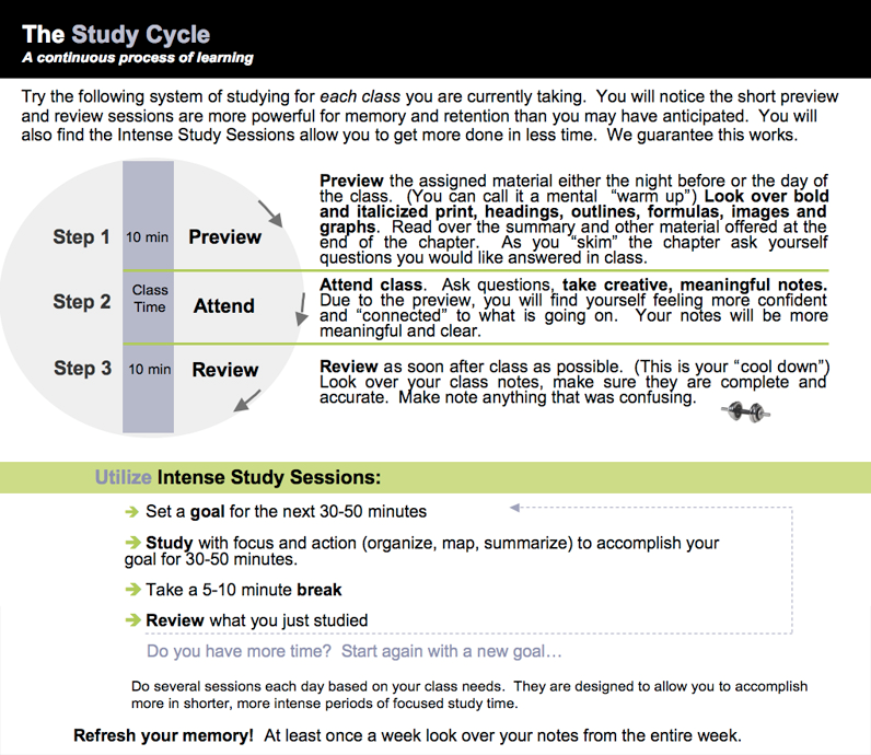 Study cycle picture